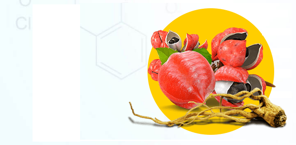 Dietonus - farmacia - celeiro